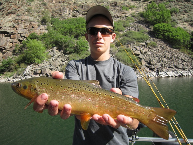 Top colorado fishing locations guide antero fishing for 11 mile reservoir fishing report